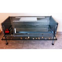 cage caille vendre la belle caille de bl en belgique la belle caille de bl. Black Bedroom Furniture Sets. Home Design Ideas