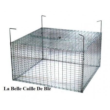 Cage à pâturée