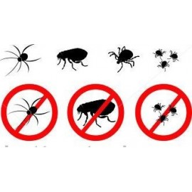 Insecticides - Insectes volants - Insectes marchants