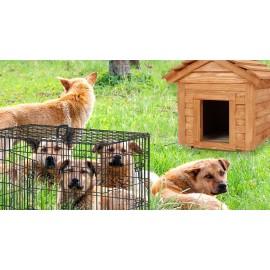 Chenil pour chien - Panneaux de chenil