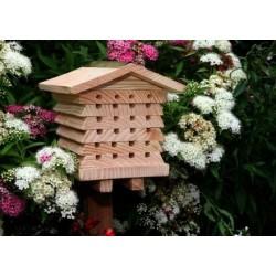 observation des insectes. Black Bedroom Furniture Sets. Home Design Ideas