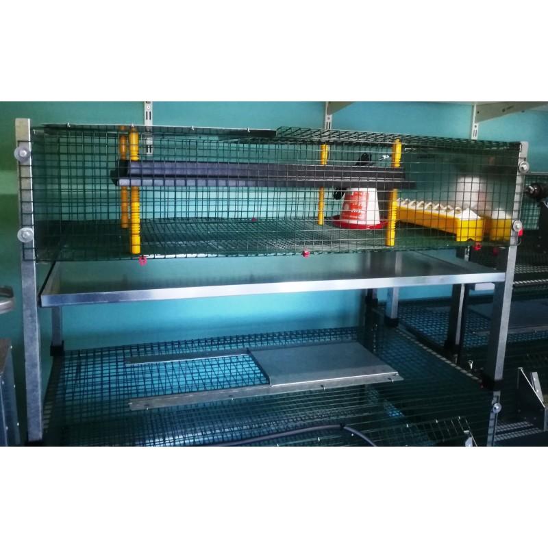 cage avec panneau chauffant pour poussin