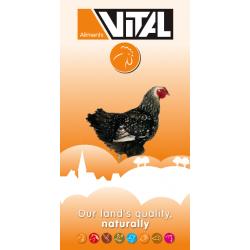 Vital poulet campagard farine