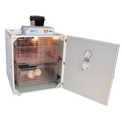 incubator voor struisvogeleieren