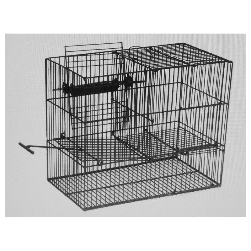 oiseaux du pays. Black Bedroom Furniture Sets. Home Design Ideas