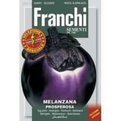 Aubergine - Melanzana black...