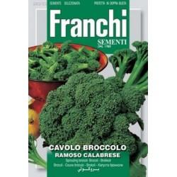 Broccoli-Cavalo broccolo...