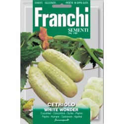 Komkommer-Cetriolo white...