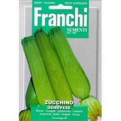 Courgette-Zucchino genovese