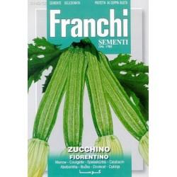 Courgette-Zucchino lungo...