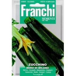 Courgette-Zucchino nero milano