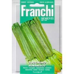 Courgette-Zucchino romanesco