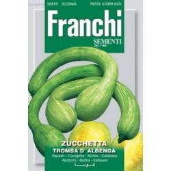 Courgette-Zucchetta tromba...
