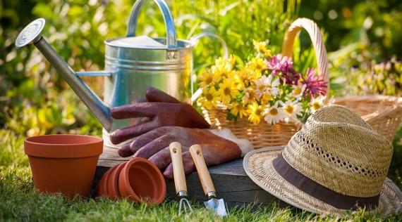 Jardiramis, le matériel et les produits pour le jardin