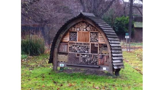Vogelhuisjes- Schuilplaatsen en bescherming van de dieren