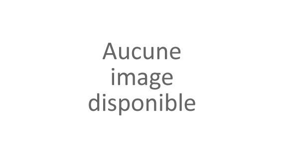 Prairie fleurie - Gazon